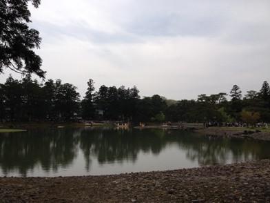 Fuji_fes